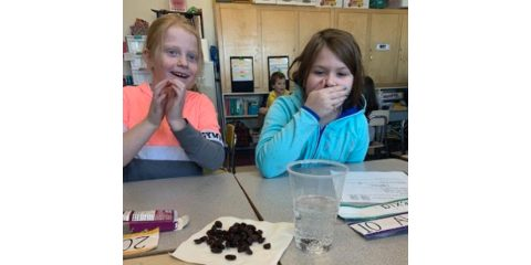 WES 3rd Graders  Learn About Matter and the Scientific Process