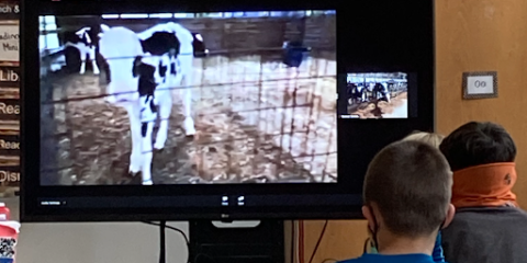 Virtual Trip to the Farm for 4th Graders
